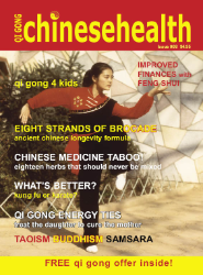 Qigong Chinese Health Magazine 8